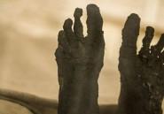 De mystérieux tatouages découverts sur des momies de femmes en Egypte