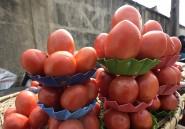 Après Boko Haram, la crise de la tomate menace le Nigeria