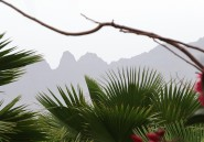 Où passer des vacances «vertes» en Afrique?