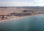 Mauvaise nouvelle, l'Etat islamique s'implante maintenant en Somalie