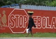 Ebola: un antipaludéen a nettement réduit la mortalité de malades, selon une étude