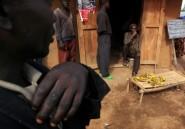 Massacre ethnique en RDC: 14 morts