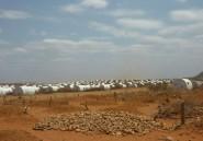 Ethiopie: les pénuries alimentaires causées par la sécheresse en passe de s'aggraver