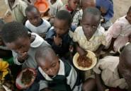 L'Afrique australe asséchée, le Zimbabwe en état de catastrophe naturelle