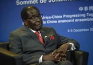Sécheresse: le Zimbabwe fait appel aux dons pour importer de la nourriture