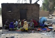 Boko Haram: vaste offensive de l'armée camerounaise au Nigeria
