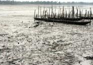 Pollution au Nigeria: nouvelles plaintes