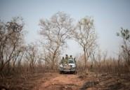 Sur les traces des derniers lions du Nigeria