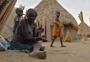 """Soudan du Sud: la famine atteint des niveaux """"alarmants"""" (ONU)"""