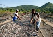 Zimbabwe: le lac Kariba quasiment