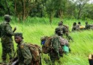 En Centrafrique, la radio comme arme contre la LRA