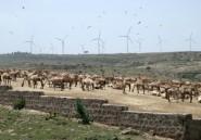Electricité: création d'une vaste co-entreprise pan-africaine