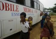Paludisme: les résistances aux médicaments confinée