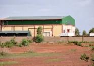 Le Burkina victime du soudain succès de ses ânes