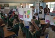 """Soweto: sur les pas de Matisse, des enfants """"peignent avec des ciseaux"""""""