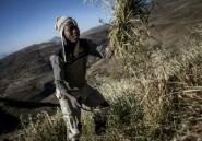 Sécheresse en Afrique Australe: la FAO lance un cri d'alarme