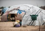 Nigeria: l'ONU suspend son aide après une rare attaque de convoi humanitaire