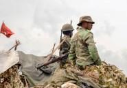 RDC: sept morts dans des affrontements entre l'armée et des rebelles ougandais