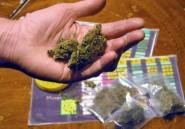Mali: saisie de deux tonnes de cannabis en provenance du Burkina Faso
