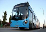 Tanzanie: bus bleu contre dala dala, ou comment vaincre les bouchons