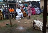 """Côte d'Ivoire: des chefs traditionnels purifient leur terre afin que le sang """"ne coule plus"""""""