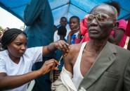 """Angola/RD Congo: l'épidémie de fièvre jaune """"sous contrôle"""" selon l'OMS"""
