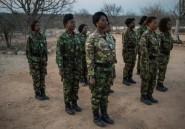 """Afrique du Sud: le bilan écorné des """"Mambas noires"""" dans leur lutte pour sauver les rhinocéros"""