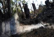 Madagascar: les paysans obligés de brûler la forêt pour survivre