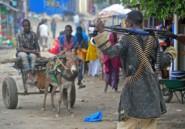Somalie: les shebab occupent une ville stratégique