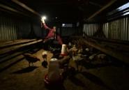 L'Afrique se tourne vers le solaire pour les zones oubliées