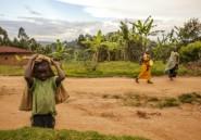 Noël sanglant en RDC: au moins 35 civils tués dans plusieurs attaques au Nord-Kivu