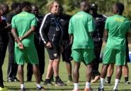 CAN-2017: les entraîneurs français encore plébiscités