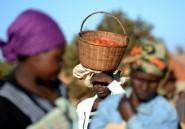 Au Zimbabwe, la lutte des veuves spoliées par leur belle-famille