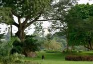 Cocody, le quartier chic d'Abidjan, rempart contre le réchauffement climatique