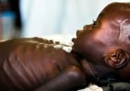 Famine au Soudan du Sud: le président promet d'aider l'accès aux ONG