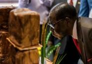 Zimbabwe: pour ses 93 ans, Mugabe fait ripaille avec ses partisans