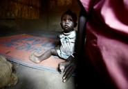 Fatigués et affamés, les Sud-Soudanais se réfugient au Soudan