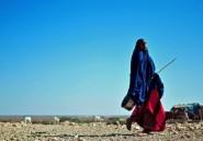Somalie: 110 morts en 48 heures