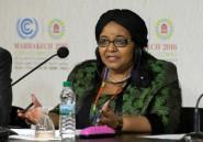 Afrique du Sud: première victoire judiciaire des écologistes