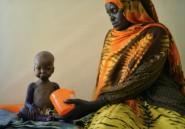 Famine en Somalie: aide d'urgence de 22 millions de dollars de l'ONU
