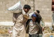 Yémen : des ONG dressent un tableau humanitaire apocalyptique
