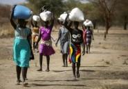Soudan du Sud: 6 travailleurs humanitaires tués dans une embuscade