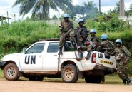 Experts de l'ONU tués en RDC: un suspect en garde