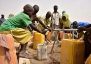"""Niger: la """"mauvaise"""" qualité de l'eau, cause de l'hépatite E dans les camps de réfugiés"""