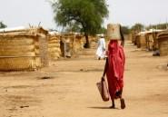 """Des réfugiés sud-soudanais se disent """"en sécurité"""" dans un camp du Darfour"""