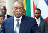 Afrique du Sud: la justice autorise un vote de défiance