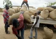 Ghana: Farmerline, l'application qui permet aux agriculteurs de voir grand