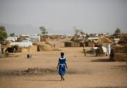 Cameroun: huit civils tués dans un attentat suicide dans le nord