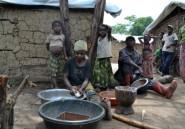 RDCongo: nouveaux heurts meurtriers entre Pygmées et Bantous