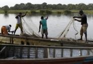 Nord-est du Nigeria: au moins 31 pêcheurs tués par Boko Haram